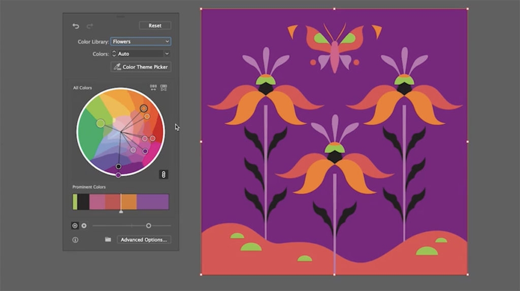 Illustrator v 25.0
